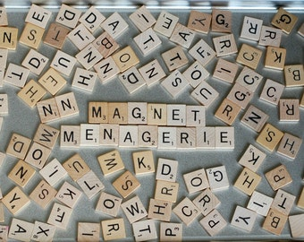Alphabet Magnet Letters - Choose Your Own Word - 11 letters