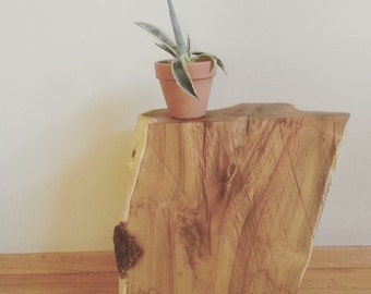 Bough Tree Stump Side Table
