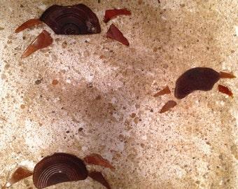 Sandy crabs