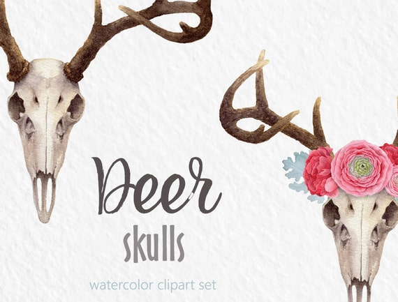 Watercolor Clipart Deer Clipart Skull Flower Crown Digital