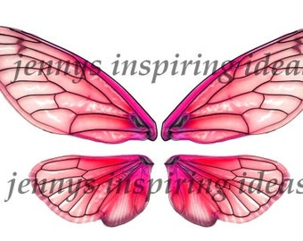 Pink Cicada Wings