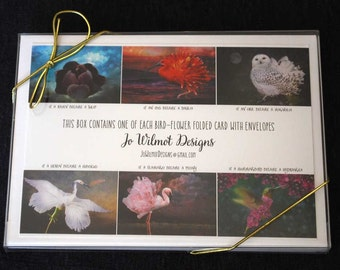 BIRD-FLOWERS set of 6 greeting cards