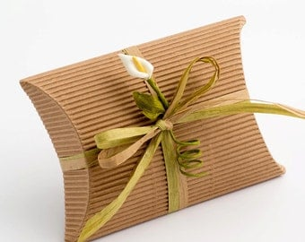 10 Corrugated Kraft Envelope Boxes