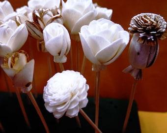 20 Sola Wood Diffuser Flowers with 5in. Rattan Reeds, mix of Jasmine, Lotus, Rose, Mini Rose, Opium Poppy