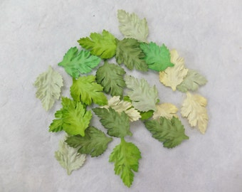 50 assorted colors mulberry green paper leaves