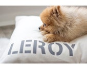 UNIQUE Dog Bed COVER with BIGGER Personalization, Pet Duvets, Flippable, Durable Army Duck Canvas, Color Block, Pet Name Included