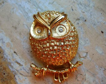 FREE SHIPPING Vintage Owl Brooch with Rhinestone Eyes
