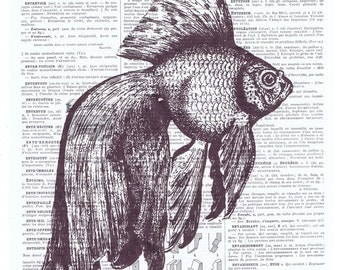 Fish,goldfish,print.All Occasion, Gift. Altered Antique Book Page.Vintage.buy 3 get 1 free, aquatic, ocean, Special.affordable paper art