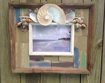 5 x 7 Sliced Nautilus Seashell Frame