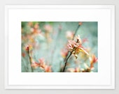 nature photo bright colorful acqua peach pink- Color Bloom fine art photograph 7x10