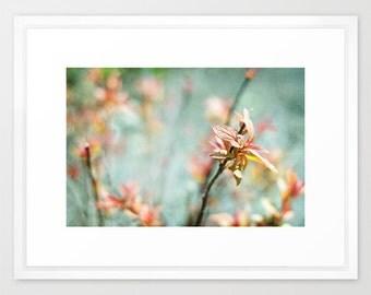 nature photo bright colorful acqua peach pink- Color Bloom fine art photograph 7x10