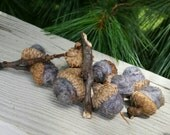 Wool Felted Acorns Marbled Gray, Blue, Brown Home Decor Eco Friendly