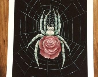 Rosa Arachnida Print