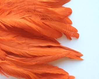 COQUE TAIL FEATHERS / Carrot Orange  / 167