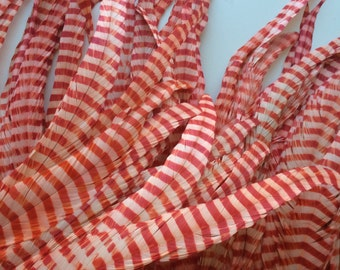 ZEBRA Stripy Coque Tail Feathers / Ivory and Strawberry red  /  Z - 17