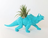 Dinosasur Planter with Air Plant Room Decor, College Dorm Ornament, Plants and Edibles, Blue Repurposed Toy