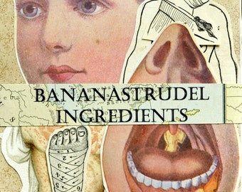 1895 to Ca. 1940 BANANASTRUDEL INGREDIENTS - 25-pc. Special Anatomy Pack. Probably the Best Collage/Ephemera Pack