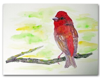 Rose Finch Bird Watercolor Painting 9x12 Fine Art original red bird on branch songbird wildlife small format art wall decor ready to ship