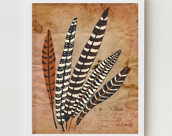 "Feather Print Modern Wall Decor Art Poster ""Five Fine Feathers""  11x14 Brown Vintage Inspired Wall Decor, Digital Illustration Art Print"
