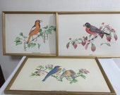 Vintage Bird Picture by Ned Smith Choose One