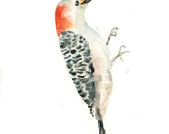 RED BELLIED WOODPECKER Original watercolor painting 8x10inch(Vertical orientation)