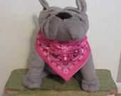 Large Hot Pink Dog Bandana, Slide on Bandana, Dog Scarf, Dog Bandana, Pet Accessory, Dog Collar, Bandana, Dog Lover, Pink Paisley Print