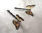 Monarch Butterflies Resin Butterfly Hair Pin Pair