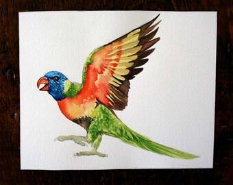 Original Watercolor Lorikeet study
