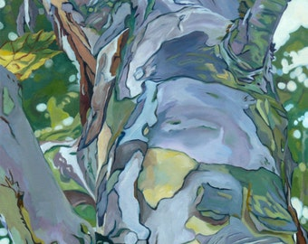 Summer Sycamore Fine Art Oil Painting