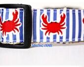 Red Crab Dog Collar, Adjustable Dog Collar, Ocean Dog Collar, Nautical Dog Collar, Preppy Collar, Stripe Dog Collar