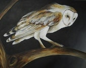 Barn Owl on Branch canvas painting, bird artwork original, fine art 18x24 custom