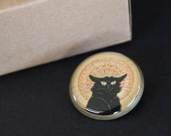 Chat Noir Brooch/Pin