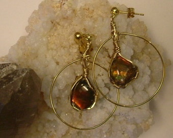 Bright Red to Green and Green to Orange Gem Ammolite fr Utah Deposit Wire Wrapped hoop Earrings Gold Filled Wire 14K Gold Post Finding 384
