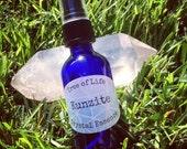 Kunzite Crystal Essence Crystal Elixir Gem Waters