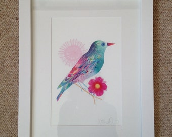 Beautiful Ilona Drew A4 Starling Giclee Print.