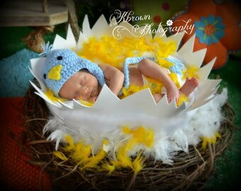 FREE SHIPPING Cracked Egg and Nest Photography Prop