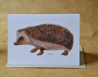 Hedgehog - Greeting Card - Woodland Animal Card - With Envelope