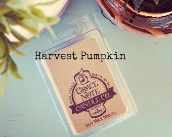 HARVEST PUMPKIN Soy Wax Tarts, Harvest Pumpkin Scented Soy Wax Melts, Soy Tarts, Soy Melts, Wax Tarts, Hand Poured Candle Melts