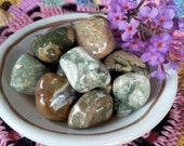 Rainforest Rhyolite Tumbled Gemstone Crystals-Reiki charged, Earth Healing, Communicating with Faeries, Tree Spirits, Pachamama,Mother Earth