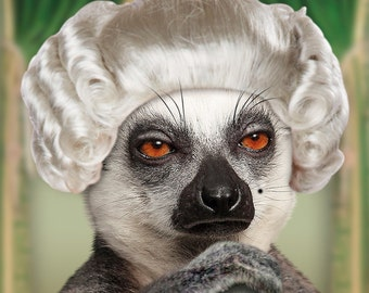 Funny Lemur In a White Wig Just Because Card: Not Common