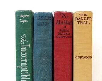 Colorful Vintage Books / Shabby Chic Decor / Book Decor / Instant Library/Photo Prop/ Book Bundle/ Wedding Decor / Old Books / Home Decor