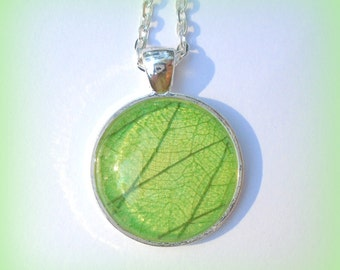 Real Skeleton Leaf Green Glass Round  Woodland Pendant Necklace