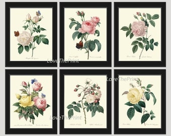 BOTANICAL Print SET of 6 Art Prints  Redoute Beautiful Yellow Pink White Roses Flowers Butterflies Interior Design Home Wall Room Decor