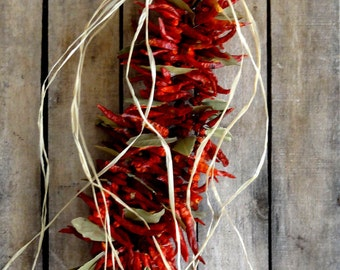 Chilli Peppers Garland - Kitchen Decoration