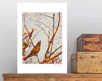 "Fine Art print, ""Remember the Song Birds? 10"" by Karyn Fendley"