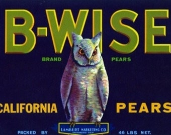 California - B-Wise (Owl) Brand Pear Label (Art Prints available in multiple sizes)