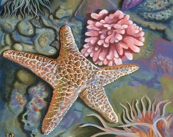 Canada - Tide Pool (Art Prints available in multiple sizes)