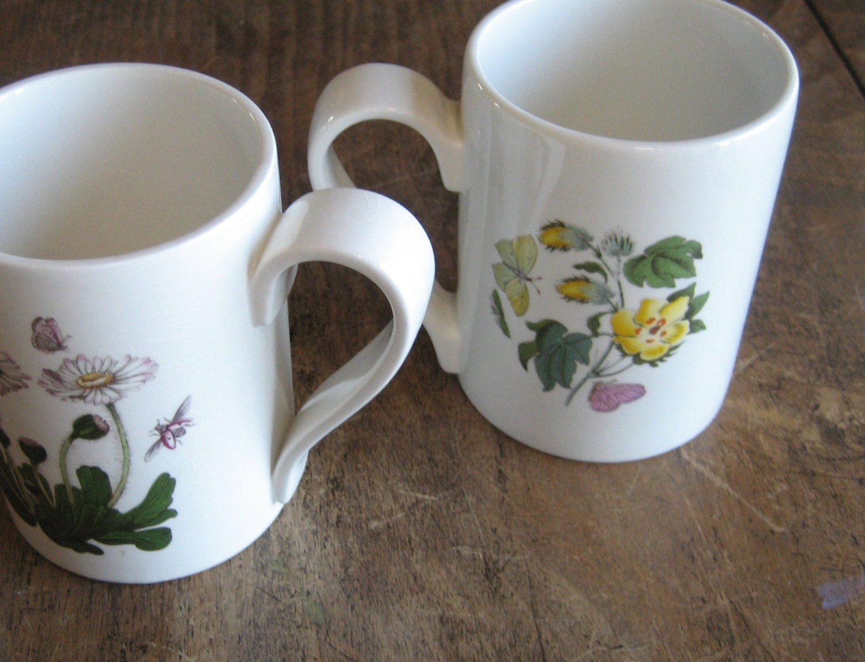 Two Portmeirion Mugs The Botanic Garden 1972