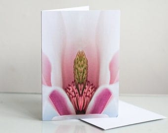 Photo greeting card, Floral greeting card, Flower greeting card, Magnolia Photographic Greeting Card, Blank card