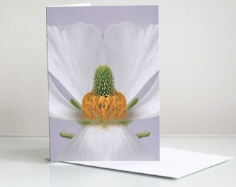 Photo greeting card. Floral greeting card. Flower greeting card. Flower Photographic Greeting Card. Note card